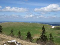 Chasseral - 7 mai